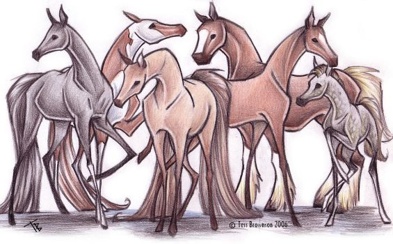 Proud horses by f0xyme