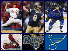 St. Louis Sports by storyteller2000