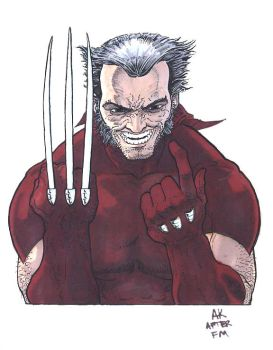 Another Wolverine by AaronKuder