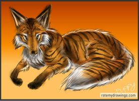 Tiger Fox OLD by DragginCat