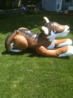 my inflatable wolf by wolfman95