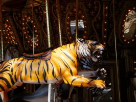 Tiger Goes Round by KayleiImagery