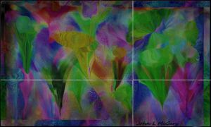 Flowers inverted by ssg-McGary