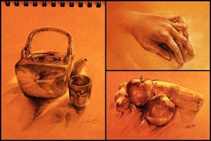 30mins-1hour drawing study by Lilaccu