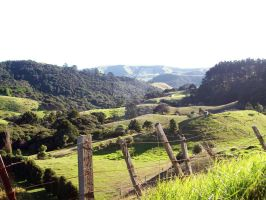 Green Rolling Hills by ElvenIllusions