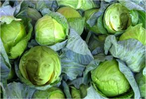 Cabbage Ghosts by MindStep