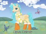 Citrus Celeste by PearlyPony