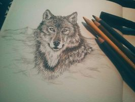 wolf scribble by InaAmani