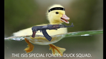 ISIS duck by COLT731