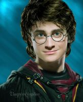 Harry Potter by vampirekingdom