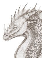 Scaly dragon portrait by Nachiii