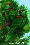 Parrots in the Pine Trees by Foxfeather248