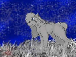 The_Lone_Grey_Wolf by Kitto-Xx