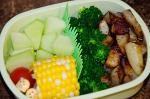 Vegetarian Bento by Demi-Plum