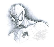 :: Spidey HeadShot Sketch :: by IvyBeth