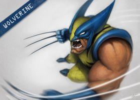 wolverine by Rats-in-the-van