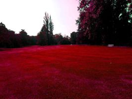 Red landscape by RomiaNyan