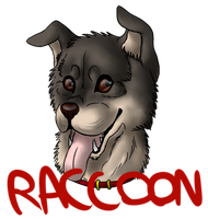 Contest prize: Raccoon by CrashSpyro98