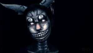 Cheshire Cat Makeup from Alice: Madness Returns 4 by VisualJamie