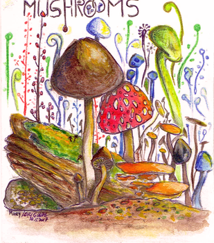 mushrooms by mathpaper