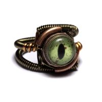 Steampunk Ring Taxidermy Eye by CatherinetteRings