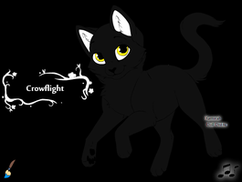 Crowflight by Wanderisawesome