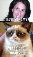 She loves Mondays... GrumpyCat is mad! by DumbledoreIsAmazing