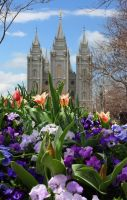 Salt Lake Temple by Ericseye