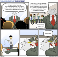 The Adventures of Business Cat - Training by tomfonder