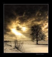 boxing day by theoden06