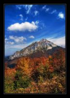 Autumn colors II by joffo1