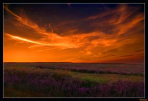 Romania - Sky on fire by christian-alexandru