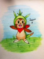 Chespin by Anime-is-my-Saviour