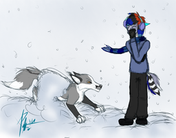 Snow Use by Phoebepup