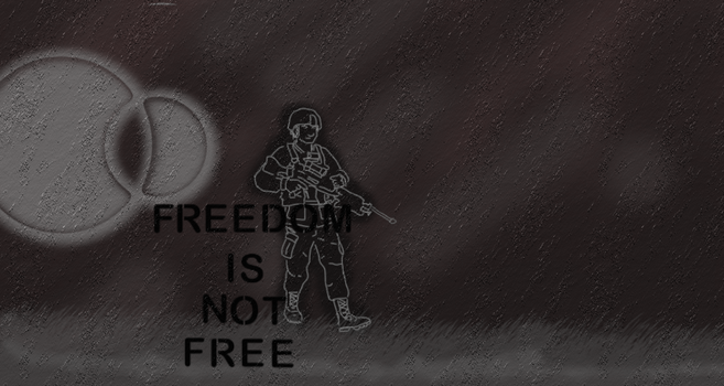 Freedom Is Not Free by DragonOfYore