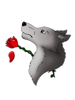 Wolf with a Rose by VampyKit
