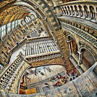Relativity by inshaala