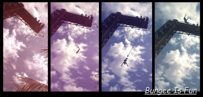Bungee Is Fun by animexia
