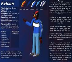 Falcon Character Sheet by pikminpedia