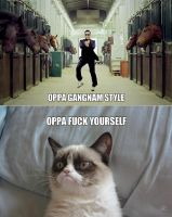 Oppa grumpy cat style by Candygirl29