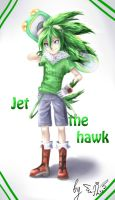 Jet the hawk by Alisthecat