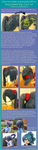 Ponytail wig tutorial 4 by monetclaude