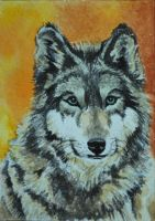Autumn Wolf ATC by waughtercolors