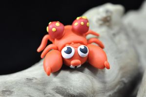 Adorable Paras by CustomExotics