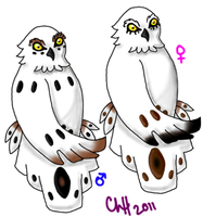 Owl Fakemon -middle- by shinrah