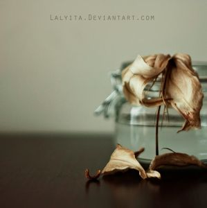Tranquility III by lalyita