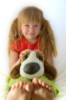Toy Dog 12865974 by StockProject1