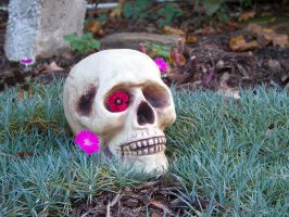 Red Eyed Skull by MadGardens