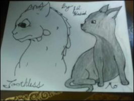 Toothless and Hairless by jahendrick