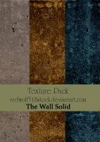The Wall Solid Texpak by redwolf518stock